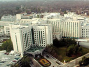 Vascular Surgery Residency Program