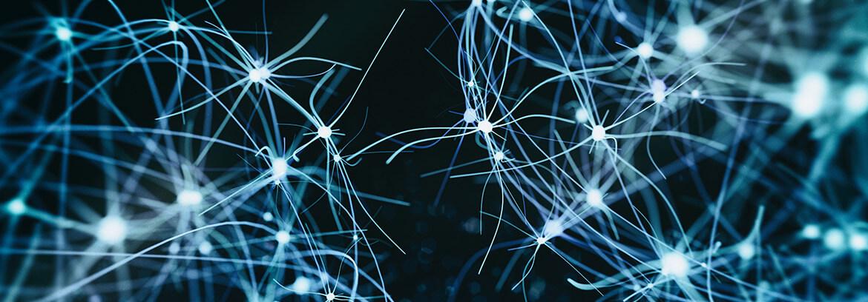 Neurology Banner Image