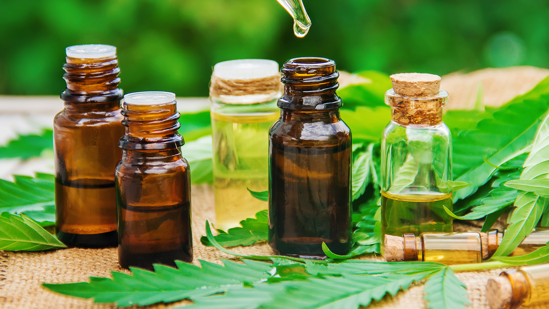Can CBD oil or hemp oil provide health help without the high? Atrium Health's experts weigh in.
