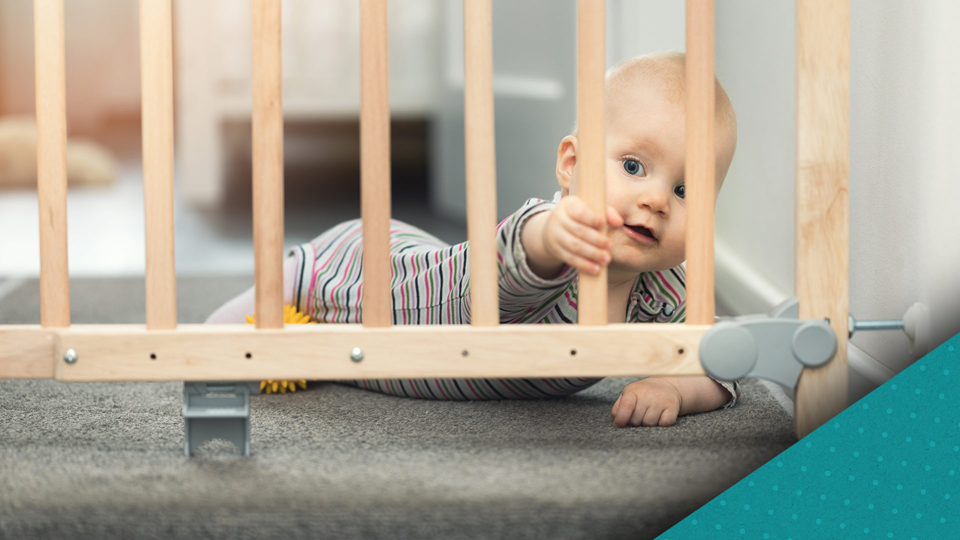 You'll do anything to keep your baby out of harm's way. See how you can keep your baby safe at home, on the road and beyond.
