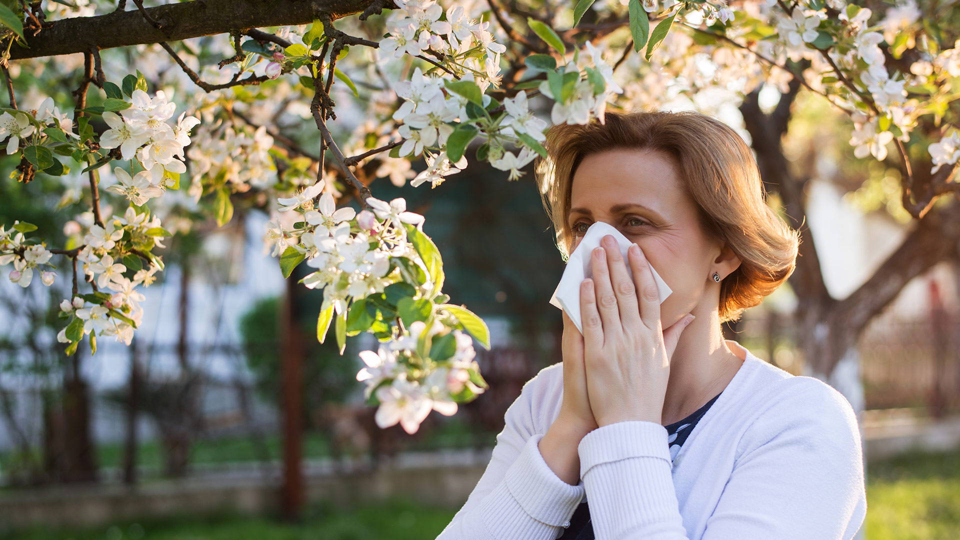 Stress, age, environment – all these things can affect your seasonal allergies. See what one Atrium Health specialist says about allergies and how to treat them.